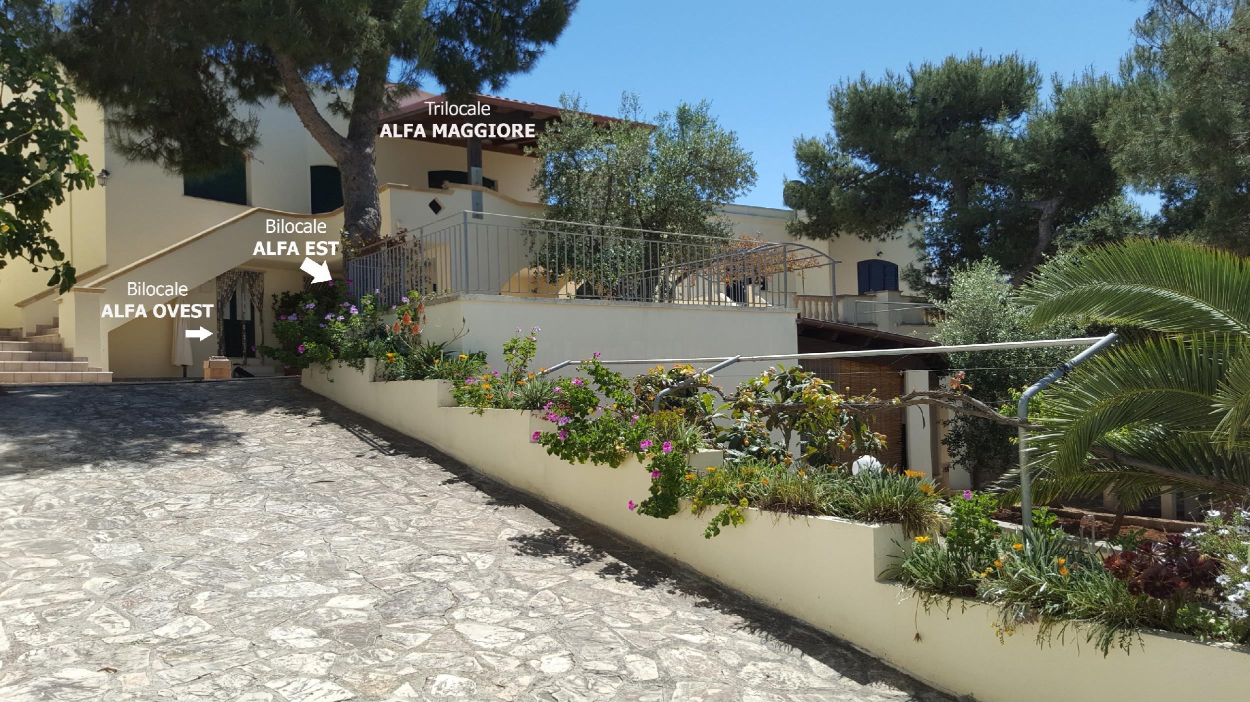 Apartment Beta Maggiore sul mare photo 22460736