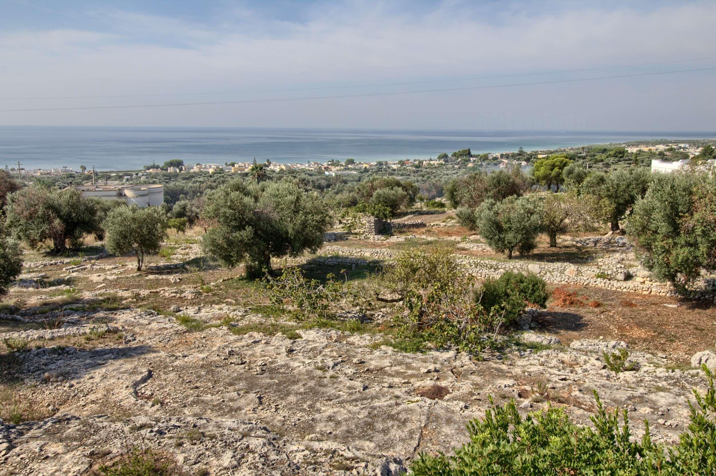 Apartment Grazia lovely seaview Pescoluse photo 22470580